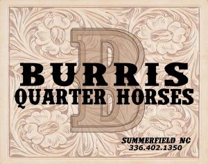 Burris Qtr Horses